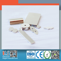 Top Quality (ISO9001) Largest N50, N35, N48, N52 Neodymium Magnets Strong Sintered Ndfeb Magnets