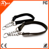 China Pet Dog Collar and Leash, Training Dog Collar Nylon, Dog Running Pet Leash
