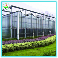 Best Price Commercial Glass Greenhouses
