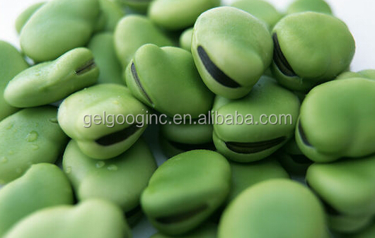 Factory Price Mung Bean Peeler Broad Bean Skin Bean Peeling Machine