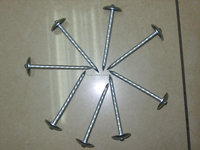 high quality electro galvanized umbrella nails/Roofing nails with washer factory
