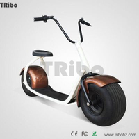 Chinese factory price Waterproof with low price color customized adult electric quad bike