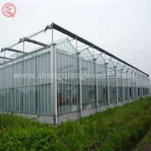 Multi span industrial greenhouse with hydroponic system