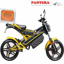 PT-E001 EEC New Popular Cheap Good Quality 3000w Electric Motorcycle