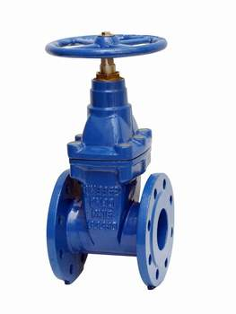 Resilient Seated Gate Valve, En1074 F4