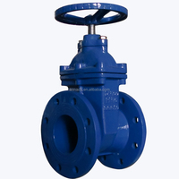 Non - Rising Stem Resilient Seated Gated Valve