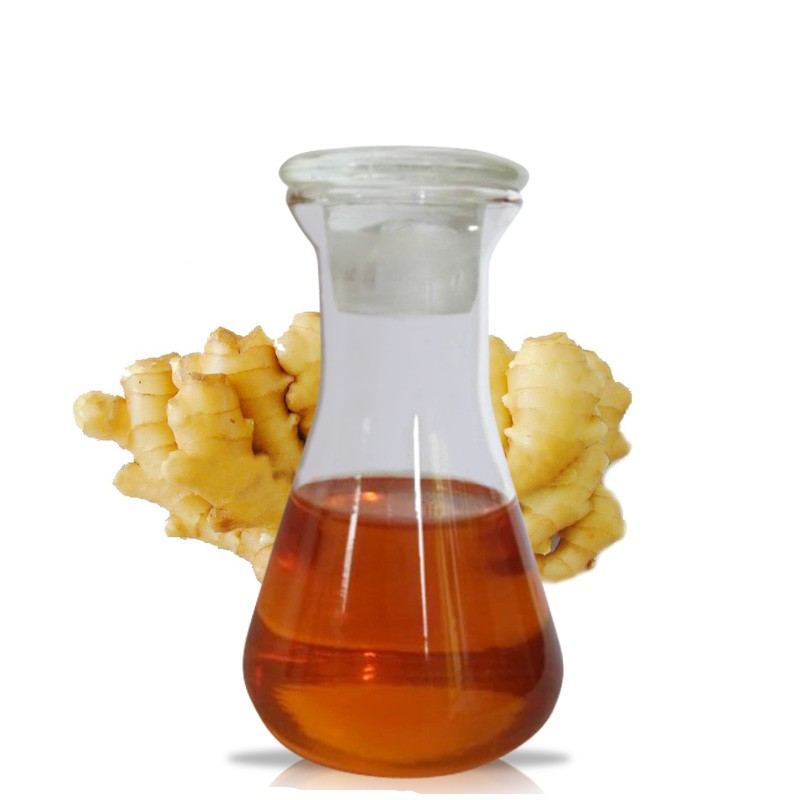 high quality pure and natural ginger essential oil price in China
