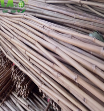 bamboo pole/stakes tokin strong eco-friendly