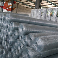1.2mm electro galvanized welded wire mesh