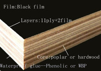 Trade Assurance Black film plastic formwork panel for concrete
