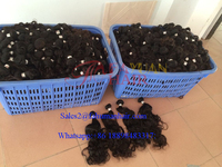 Reliable hair factory wholesale cheap Brazilian human hair extension prices