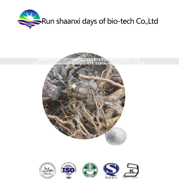 lei gong teng p.e. / Tripterygium wilfordii extract /Thunder God Vine Root Extract