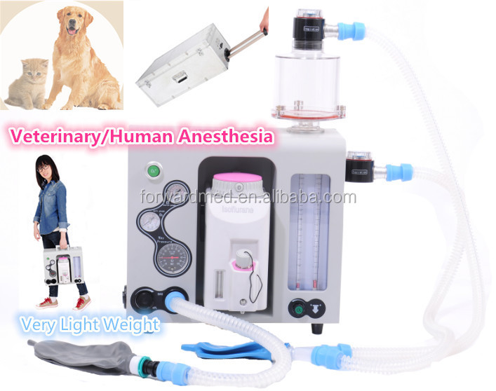 CE macked veterinary instruments vet anestesia machine for Animal Hospital