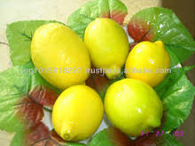 fresh citrus fruits