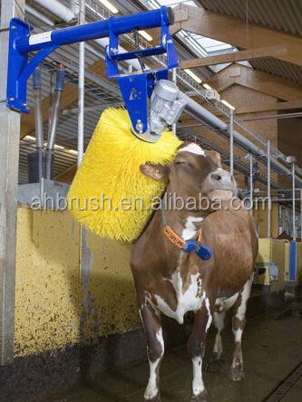 Cow Body Automatic Cleaning Brush for Sale