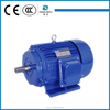 Y Aluminum/ Cast Iron 3 Phase 55kw 18kw 25kw Ac Electrical Motor