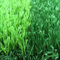 Professional cheap price sports field 30mm thick artificial grass for indoor soccer