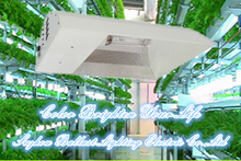 Hydroponics indoor garden 120v 250watt complete all-in-one grow light system fixture with hps bulb and built-in ballast