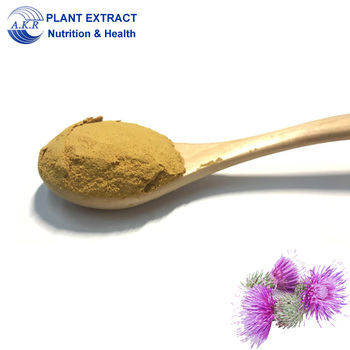 Manufacturer supply high quality Organic milk thistle extract natural silymarins