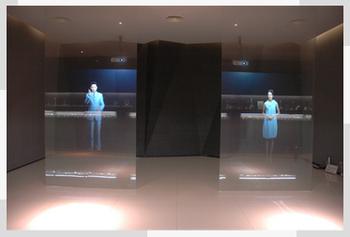 Hologram Rear Film Window Glass Holographic Rear