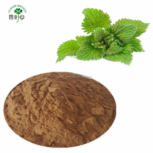 best selling products of fresh neem Extract10:1 neem leaf powder