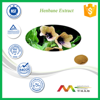 Natural Herbal Medicine Henbane Extract
