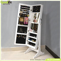 3 in 1 Dressing Mirror With Jewelry Storage,Floor Standing,Wall Mount,Over The Door