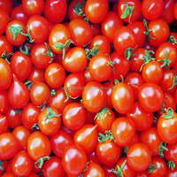.High Quality Crude Tomato Seed Oil Price