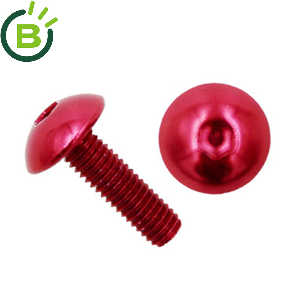 BCN 210 high quality ISO Anodized aluminum <strong>screw</strong>