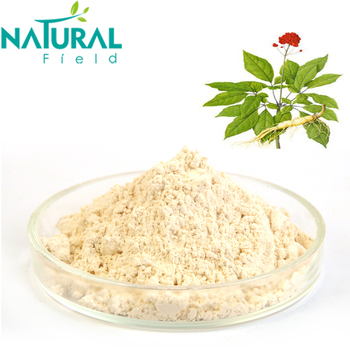 Natural Panax Ginseng Root Extract Powder 5%-80% Manufacturer