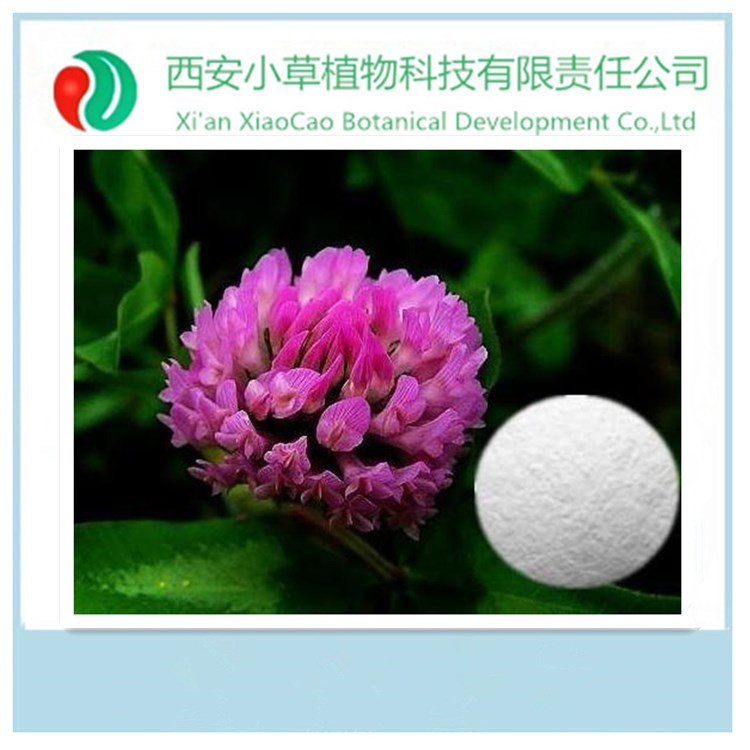 High quality with lowest price Red clover extract (Isoflavones),Trifolium Pratente L