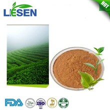 Natural Antioxidant Organic Green Tea Leaf Extract Polyphenols
