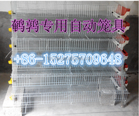 FRD-2015Popular Quality Guarantee Metal Quail Cage Design