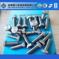 titanium hex bolt and nut