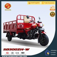 Chinese Popular New Style 300CC Water Cooled Gasoline Powered Tricycles 3 Wheel Motorcycle SD300ZH-W