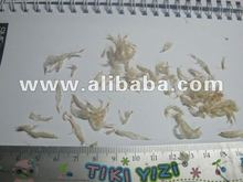 Uncooked dried baby shrimp