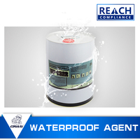 WP1322 nano Water-proof protection organic silicon hydrophobic solvent protector for brick