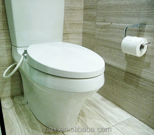 Hydro cleanse bidet toilet built in non electricity two nozzles buy bidet toilet built in - Toilet with bidet built in ...