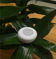 Hot Mini Speaker Good Quality Wireless Small Speaker with take picture play music function window box