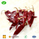 Wholesale Fresh /Dry American Hot red Chili Lowest Priced Red Peppers