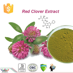 Hot Sale 100% Natural Plants Estrogen Red Clover Trifolium Pratense L. Extract with 8% Isoflavones