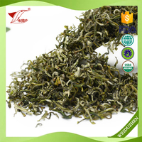 Best Price China Curly Rich Flavor Does Green Tea Burn Belly Fat Fresh Instant Green Tea