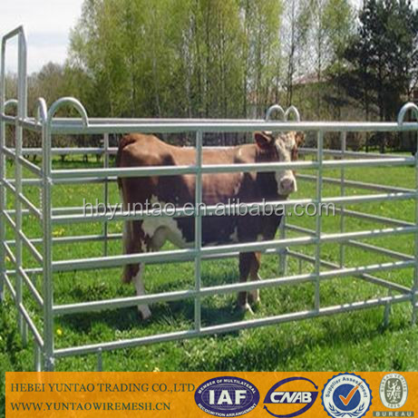 High Quality and Low Price Pipe Cattle Gate/Cattle Rail Fence/Cattle Panels For Sale Direct Manufacturer for Australia market