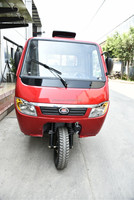 High quality Chongqing 250cc Heavy Three Wheel Tricycle Closed Driver Cabin Motorcycle Car