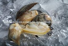 Frozen baby clam