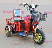 Chinese FASHION electric cargo and passenger Tricycle