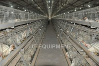 Dingtuo 3 tiers or 4 tiers galvanized chicken cage
