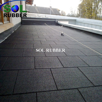 Environment Friendly Outdoor Rubber Flooring