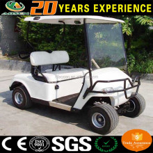 Steel Frame 2 seats mini golf cart for sale with durable rack