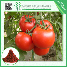 GMP manufacturer Tomato extract 1% Lycopene